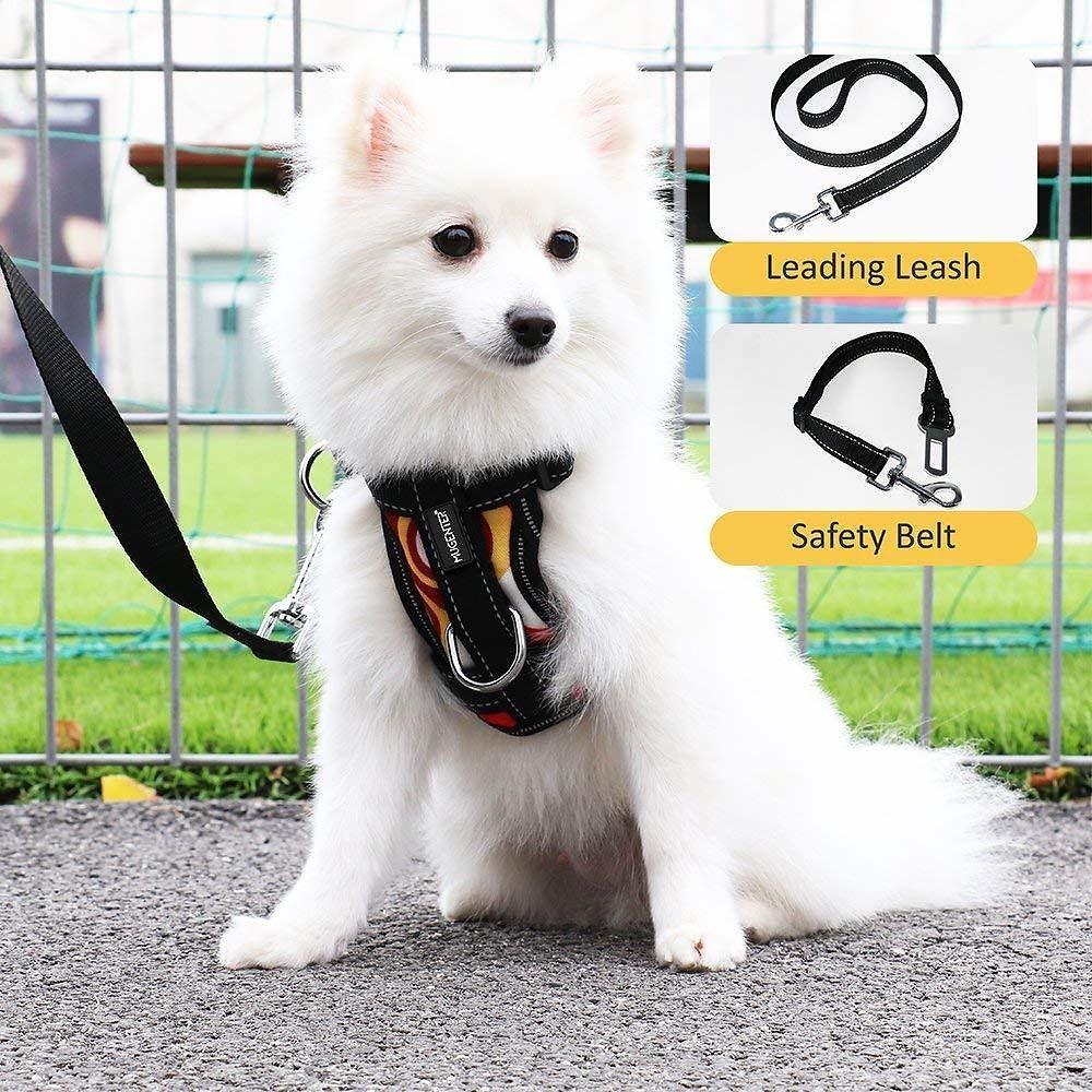 Amazon Offers Mugenter Adjustable Dog Safety Vest Harnesses