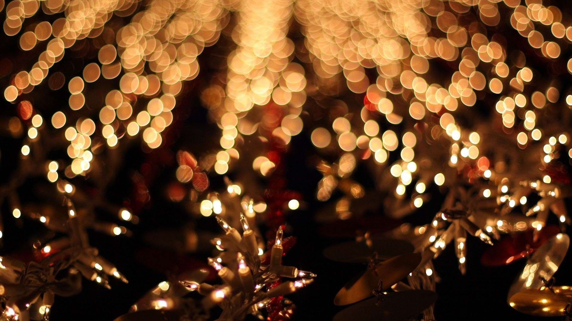 Christmas Fairy Lights Christmas fairy lights, Christmas