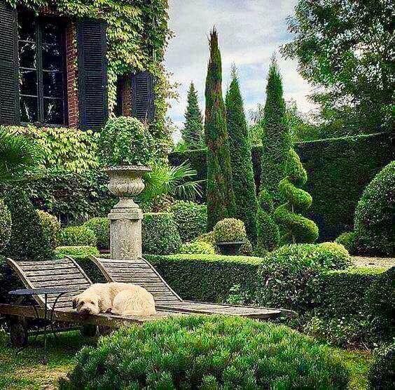 Pin de Susan Sedgebeer en Gardens \ Plants Pinterest Jardines