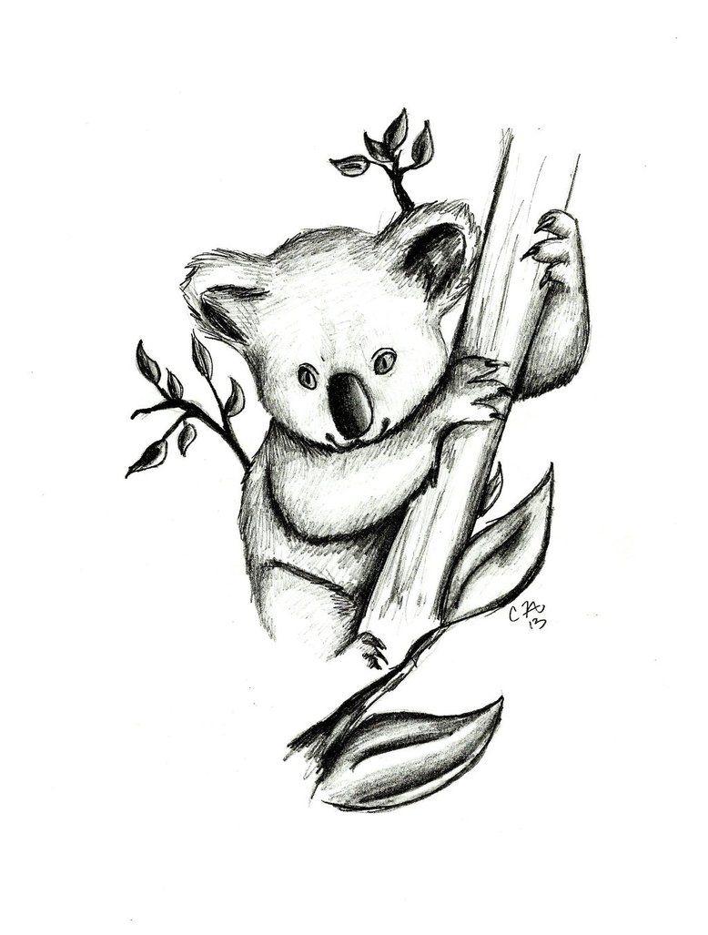 """Résultat de recherche d'images pour """"koala drawing"""""""