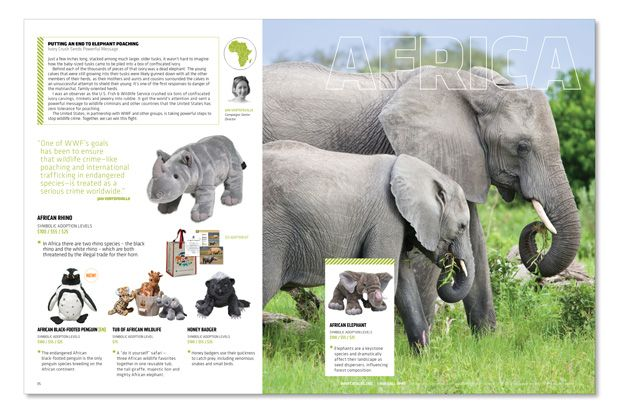 The catalog highlights WWF's conservationists and their goals, like combating elephant poaching.