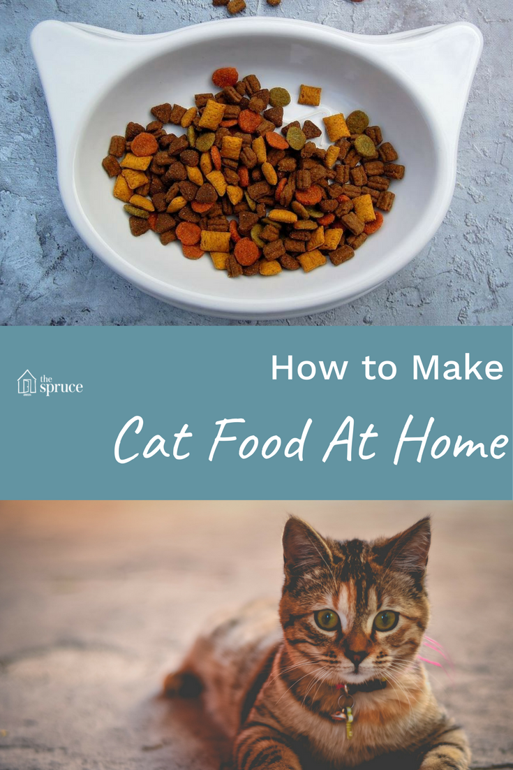 Improve your cats diet with home cooked food cat food kitty and cat homemade cat food forumfinder Image collections