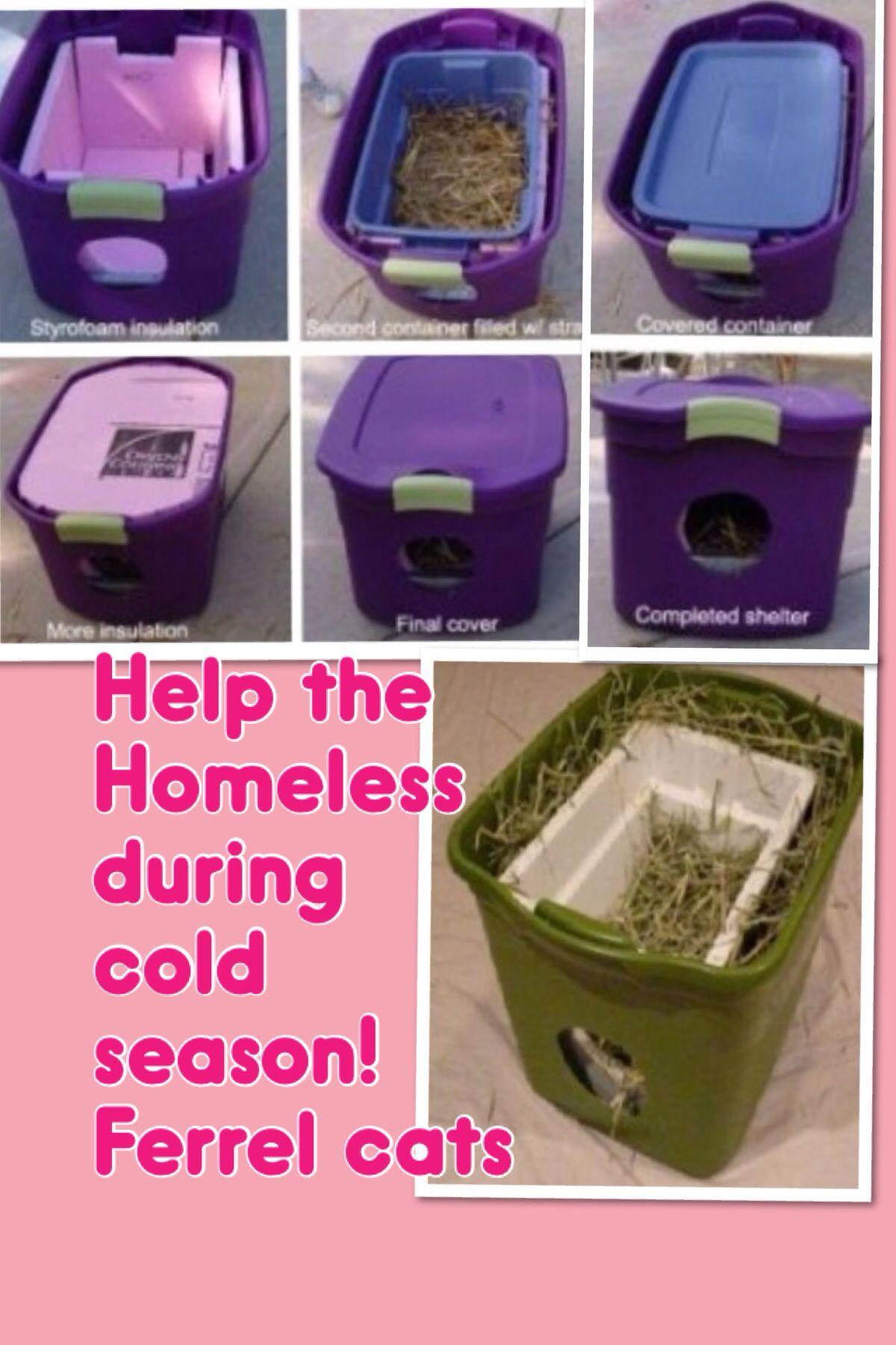 Great Idea Outdoor Cat Shelter Outdoor Cat Shelter Diy Cat Shelter