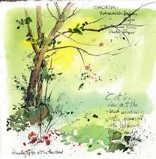 Image Result For Kate Cathy Johnson Sketchbooks