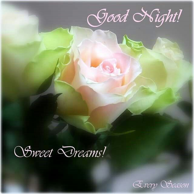 Nice Good Night Quotes With Images: Pin By Aisha Malsi On Good Morning & Good Night