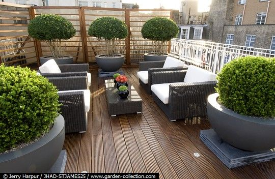 Contemporary Small Roof Garden With Seating And Topiary In
