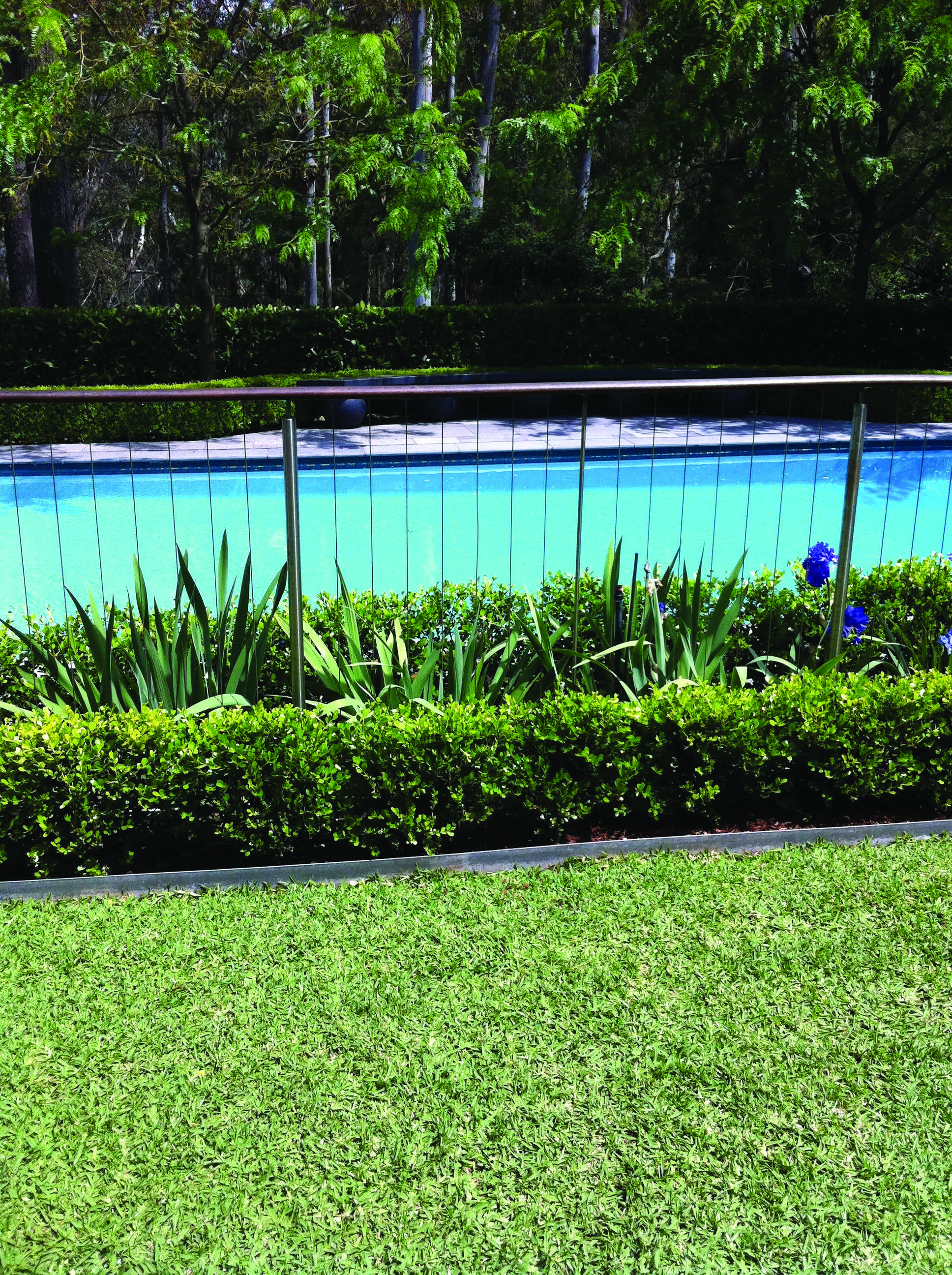 Great Pool Landscaping Brisbane Just On Miral Iva Home Design Pool Fencing Landscaping Garden Pool Backyard Pool