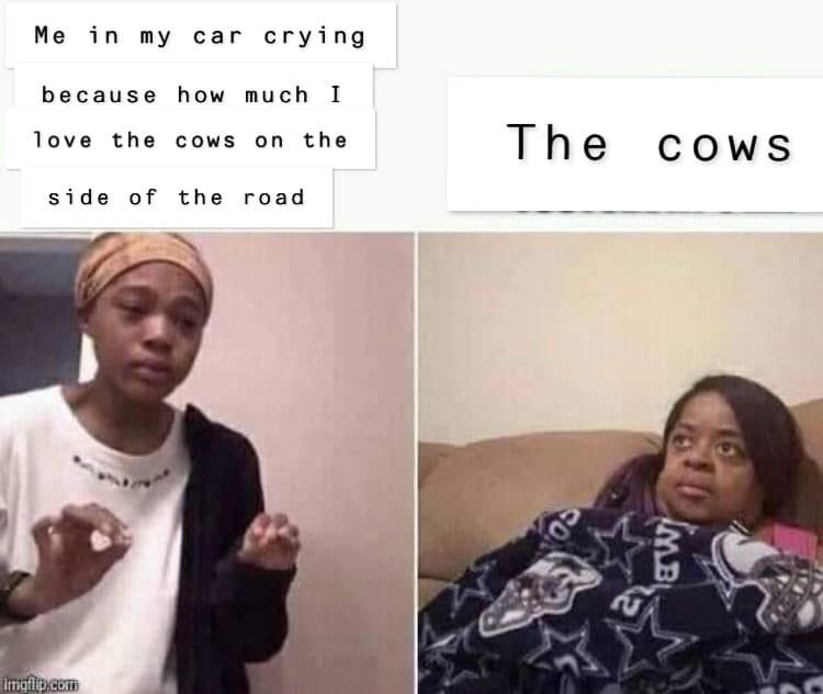 19 Vegan Memes You Can T Unsee Music Memes Funny Relatable Memes Memes
