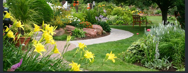 Central Texas Landscape Information Tips and Lawn Care