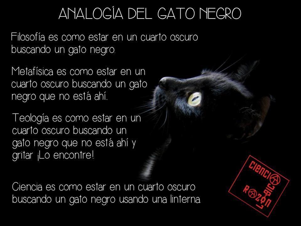 Buen ejemplo con el cuarto oscuro y gato negro   Me enamoran ...