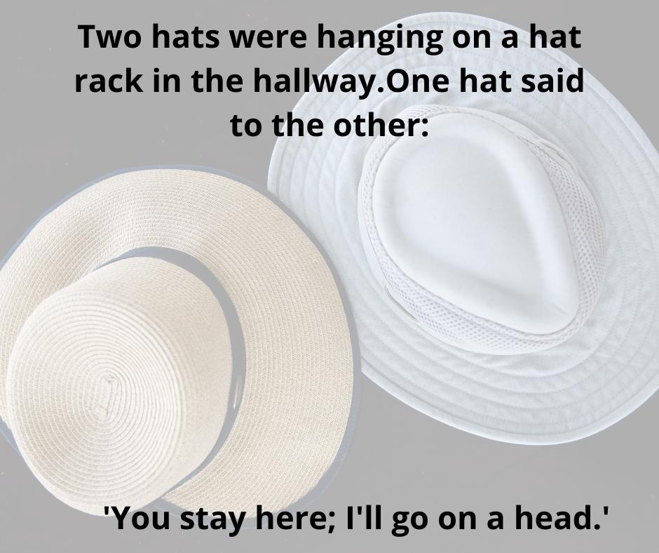 Pin By Kate Terhaar On Groaners Dad Jokes Hats Panama Hat