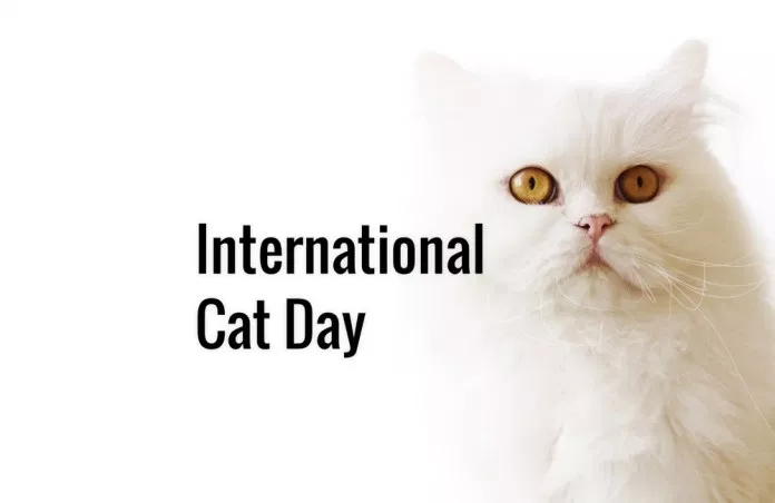 National Cat Day 2018 Name List Of Popular Cats 2018 In 2020 National Cat Day Cat Day International Cat Day