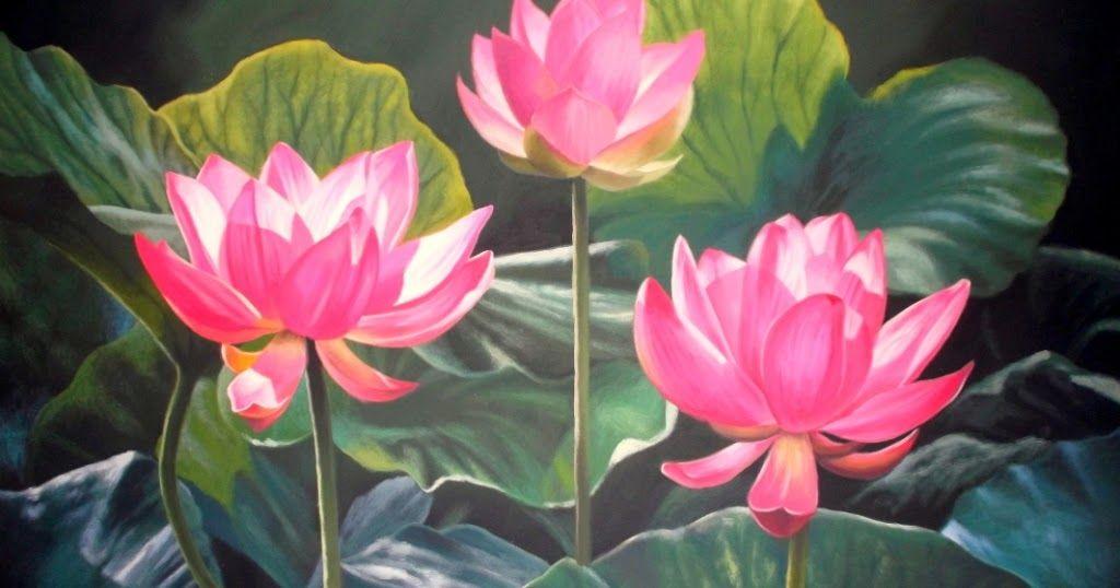 Gambar Bunga Teratai Indah Dunia Lukisan Javadesindo Art Gallery Lukisan Bunga Teratai Bunga Teratai Yang Indah Gambar Und Bunga Teratai Gambar Bunga Bunga
