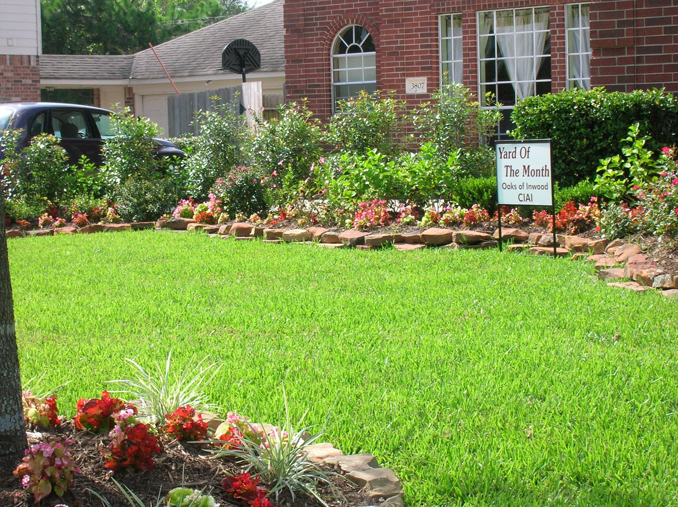 yard yahoo image search results - Front Garden Ideas Queensland