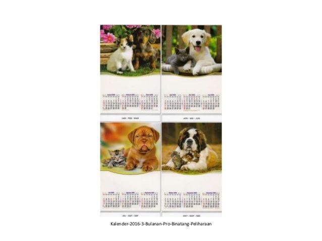 30 desain kalender 2016 pro 3 bulanan ao beautiful (Dengan ...