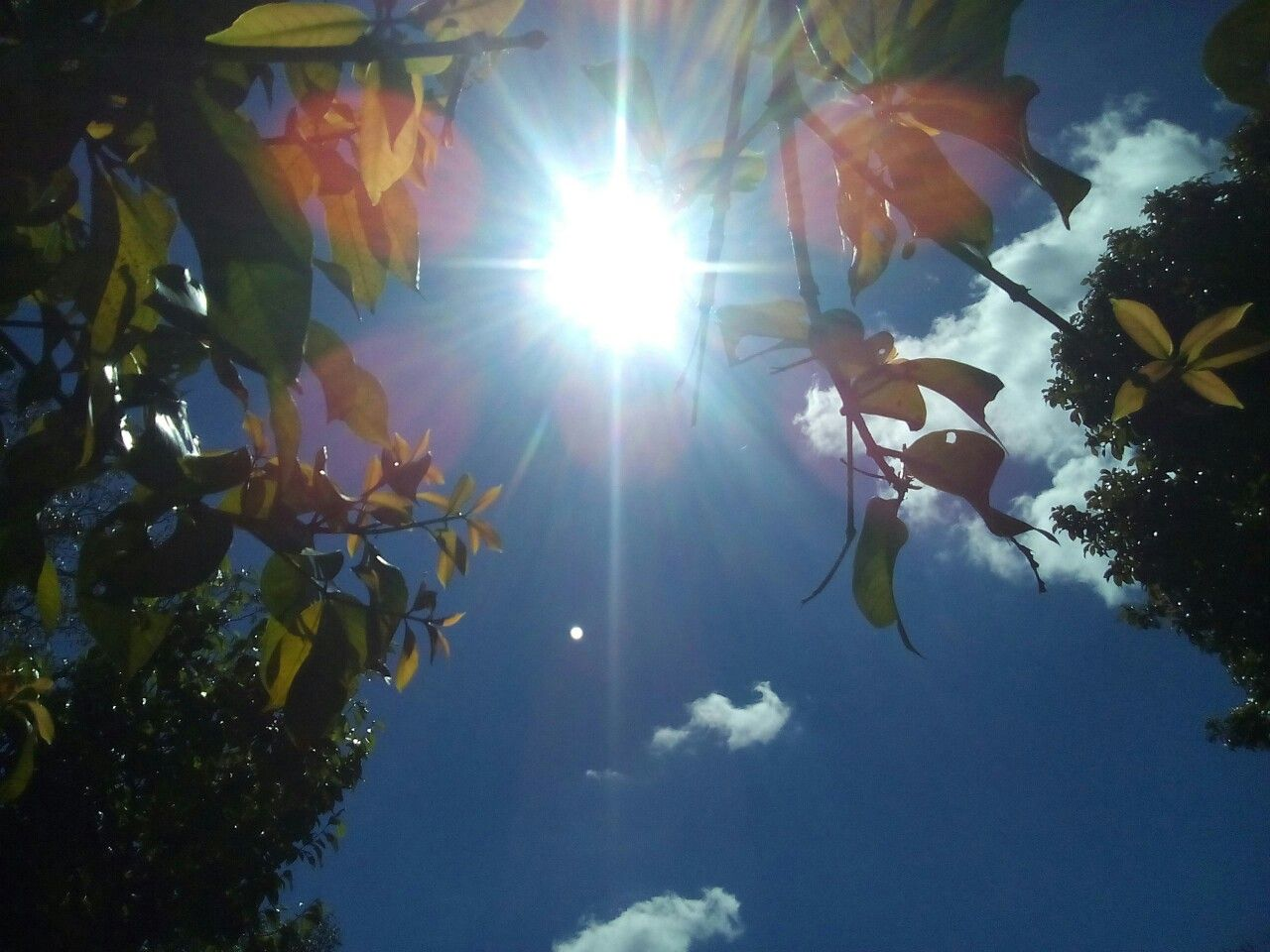 El hermoso sol