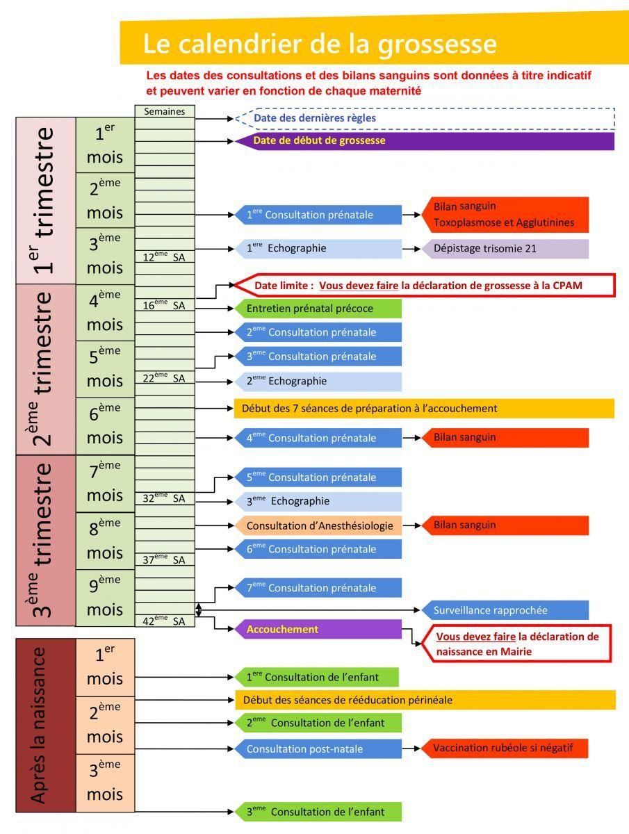 Calendrier Femme Enceinte.Epingle Sur Prengancy Baby Infographic