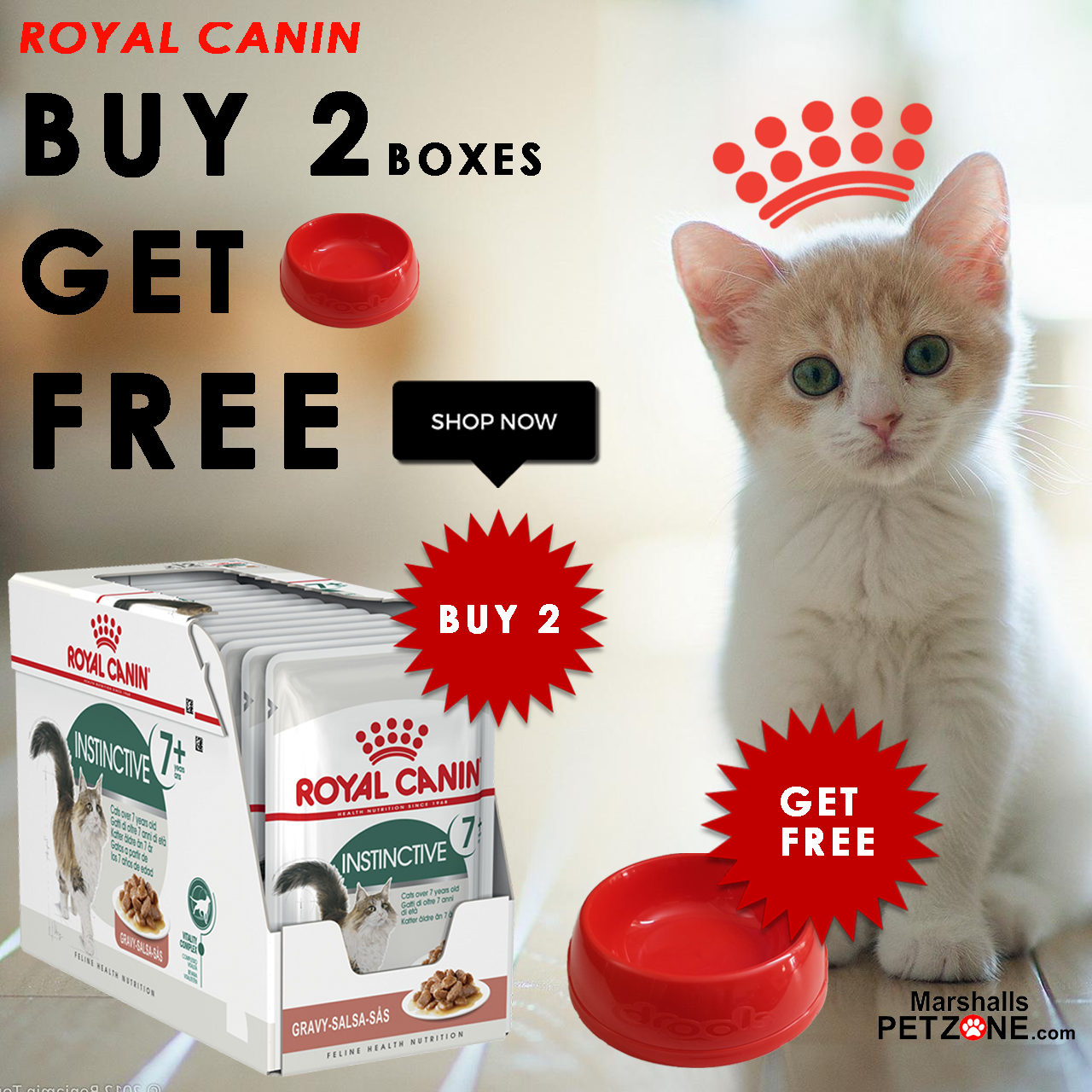 Get A Bowl Free On Royal Canin Wet Cat Food In 2020 Buy A Cat Wet Cat Food Cat Food