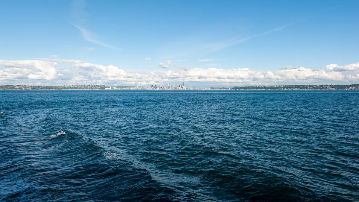 ✳ Ocean Sea Water - download photo at Avopix.com for free    🏁 https://avopix.com/photo/51292-ocean-sea-water    #ocean #sea #water #body of water #beach #avopix #free #photos #public #domain