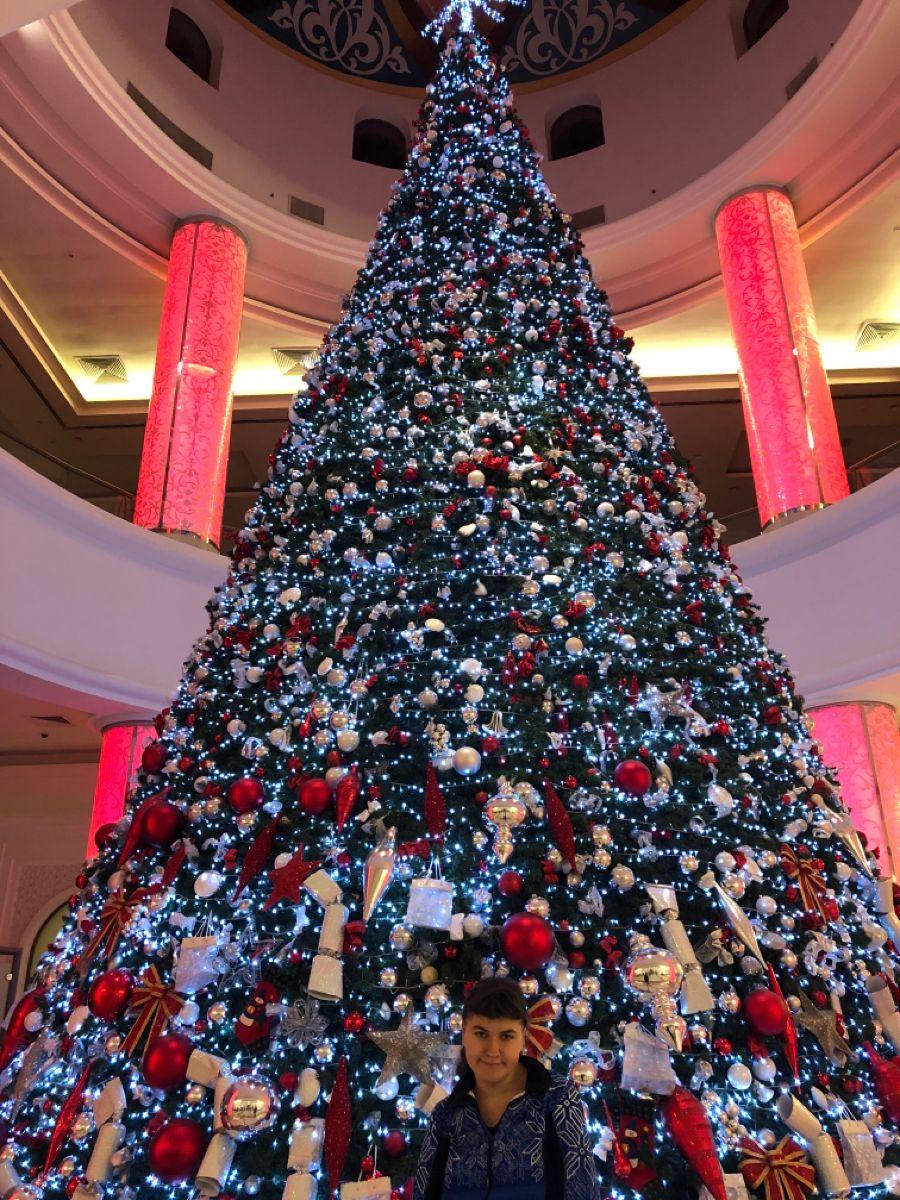 Pin By Astra Viil On Chrstmas Tree At Ajman Palace Hotel Ajman Uae In 2020 Holiday Decor Decor Christmas Tree