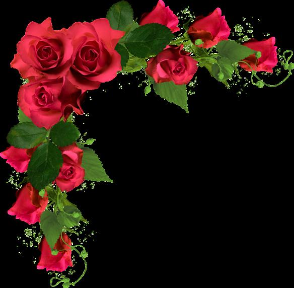 Related image (con imágenes) Fotos con flores, Flores de