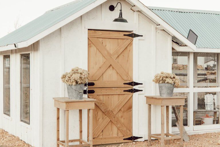 My Functional And Eye Catching Chicken Coop Design