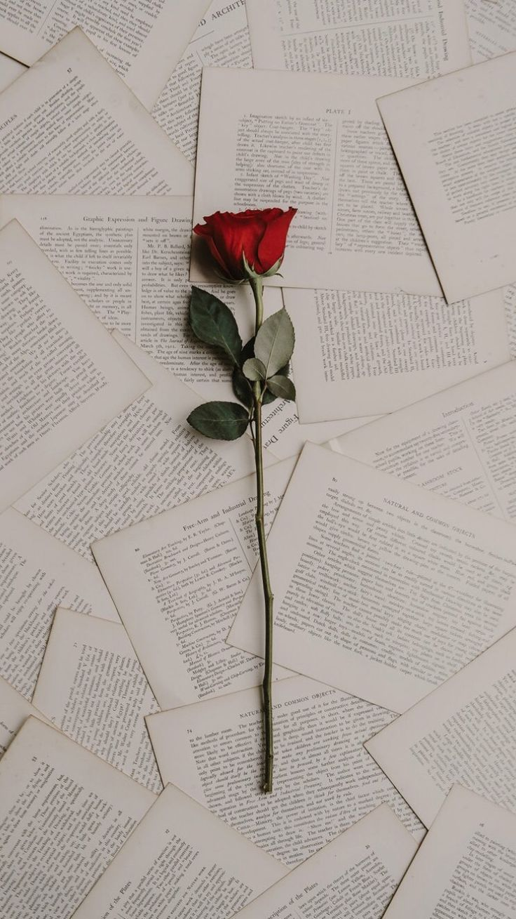Rose Books Lockscreen Wallpaper Aesthetic Tumblr