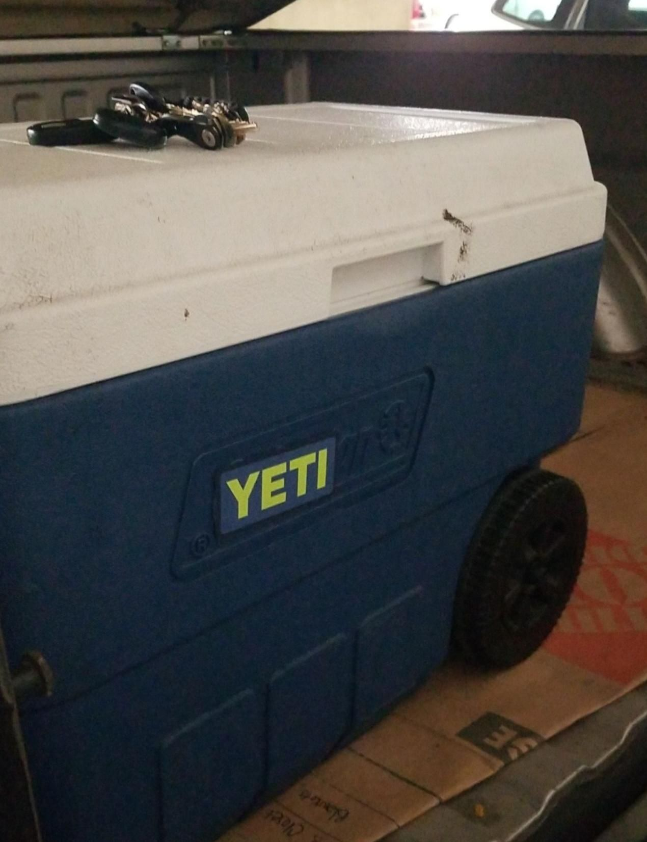 With summer coming on thought I'd upgrade the cooler ...