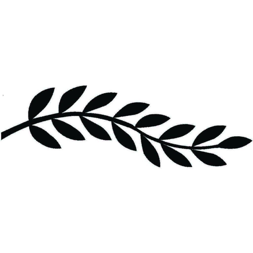 Black And White Google: Leaf Border - Google Search