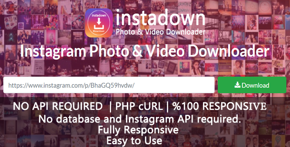InstaDown - Instagram Photo & Video Downloader | Graphic