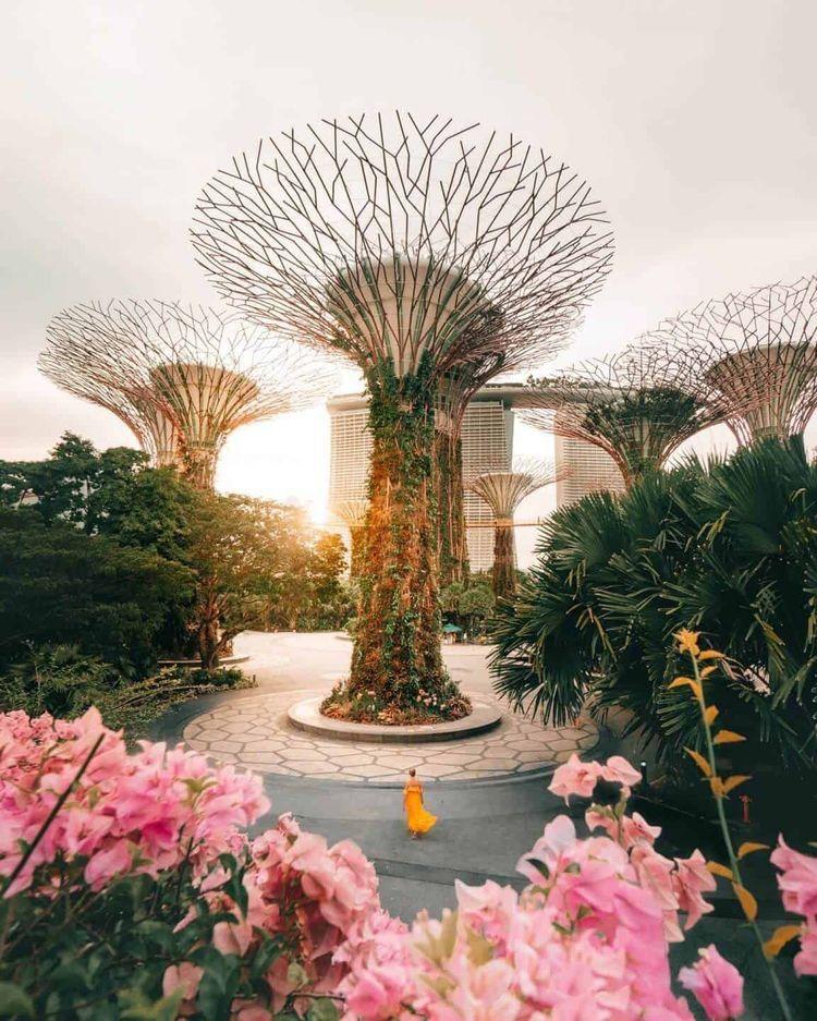 Singapore Budget Guide 10 Budget Saving Tips With Images Singapore Travel Singapore Travel Tips Singapore Garden