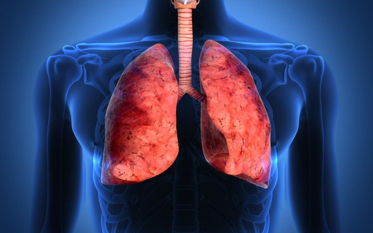 THE BEST NATURAL WAY TO CLEAR YOUR LUNGS OF NICOTINE AND TAR ...