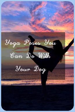 yin poses in 2020  yoga poses yin poses poses