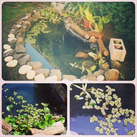 estanque artificial patio casa Mi jardin Pinterest