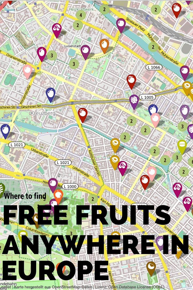 If you want to eat for free in any city in Europe, this post is for you! Free fruits for everybody!