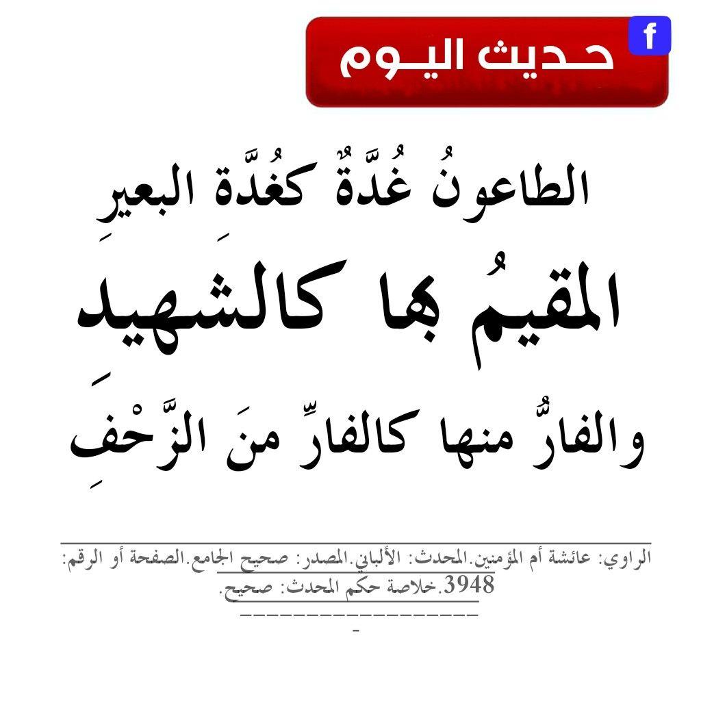 Pin By أهل الحديث والأثر حديث اليو On صحيح البخاري ومسلم شرح الأحاديث في صفحة الفيس Salaah Hadeeth Peace Be Upon Him