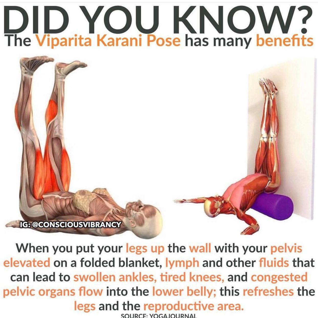 Viparita Karani Yoga Benefits