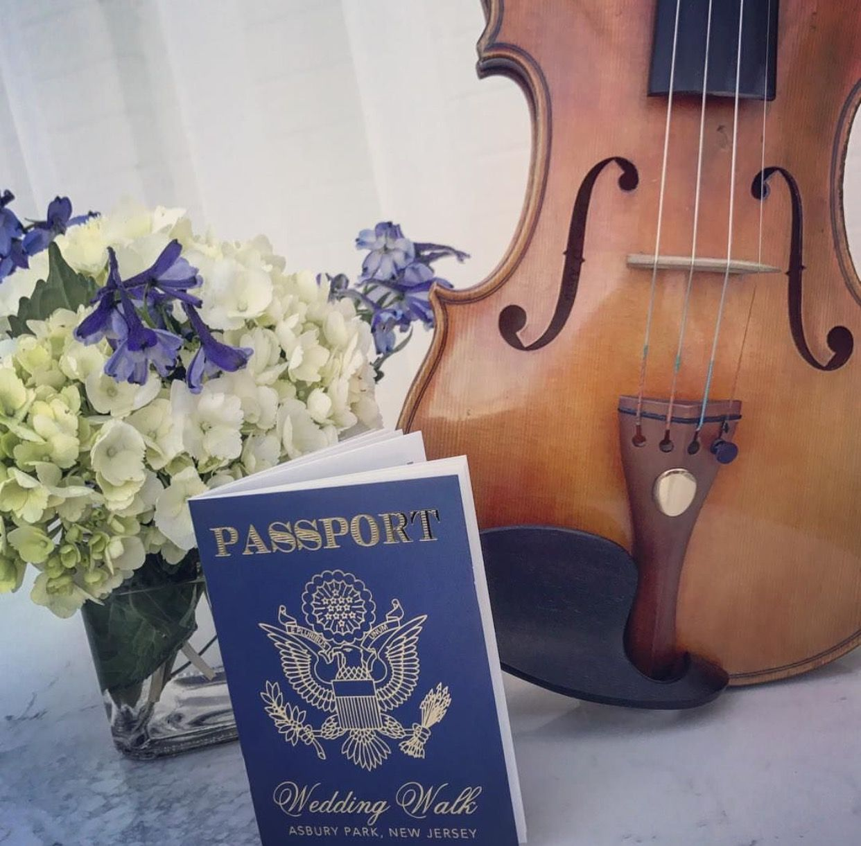 Pin on The Adventures of Sue's Violin