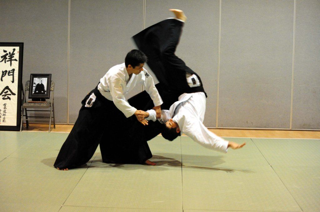 Aikido Images aikido | g.p.c.a. | poses | pinterest | aikido and martial