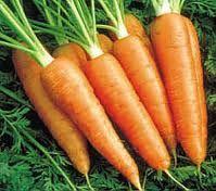 Debido a las sustancias aromáticas que posee la zanahoria, es muy buena para estimular el apetito y muy usada para la gente que padece anemía o depresión. Es muy útil para eliminar los cólicos y disipa los gases que emite el organismo, debido a ello es recomendable ingerirla después de las comidas. Ayuda a quienes padecen de estreñimiento y tienen dolor de estómago a causa de una intoxicación. http://distribuidoradefrutasramon.blogspot.com/p/la-zanahoria.html