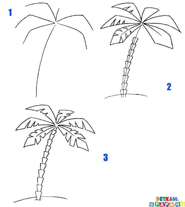 Palme Zeichnen Lernen Baume Zeichnen Lernen Zeic Baume Dibujo Lernen Palme Zeic Zeichnen Palm Tree Drawing Tree Drawing Flower Drawing