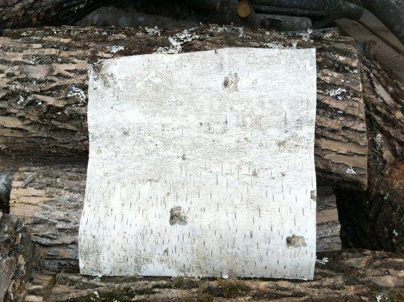 Pack of 10 Steingaesser 80299 02 0400 Birch Bark Sheets 30 x 23 cm Cream