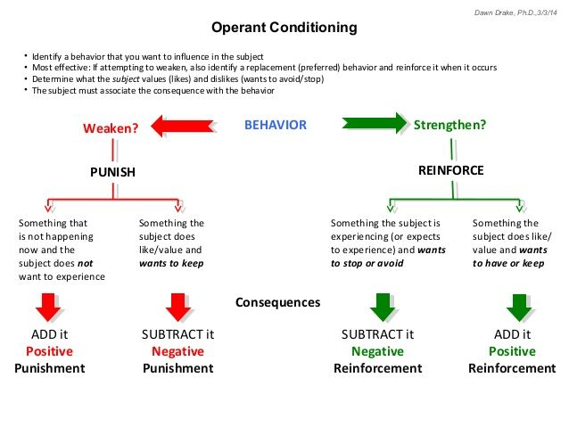 Classical Conditioning Diagram Google Search Learning