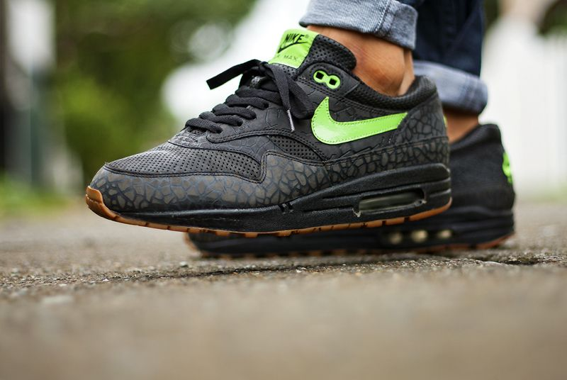 sports shoes 5c239 f3536 Nike Air Max 1 Hufquake (by msgt16)