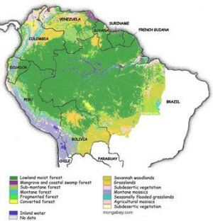 Map Of The Amazon Rainforest Showing How The Land Is Split Between