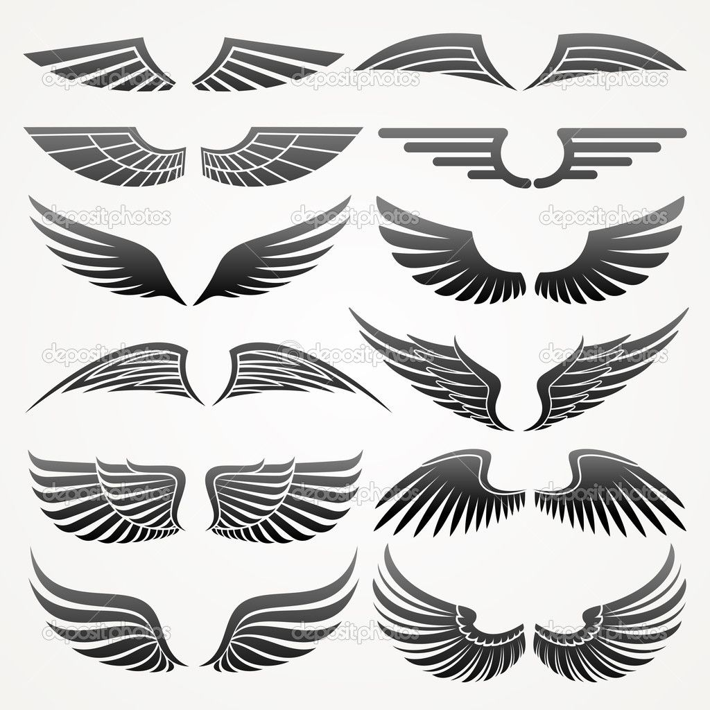 Wings. Elements for design. Vector illustration. — Stock