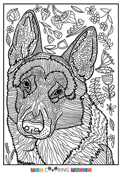 German Shepherd Dog Coloring Page Dog Coloring Page Adult