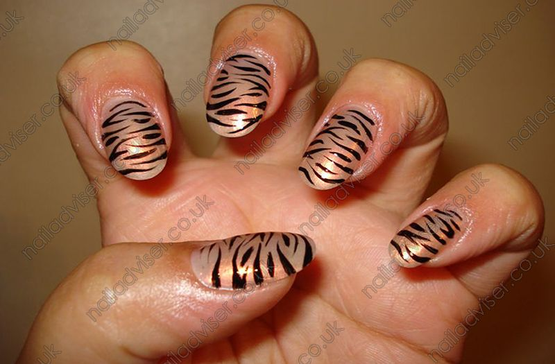 Tiger Stripe Nail Design nail art | Tiger stripe nails ...