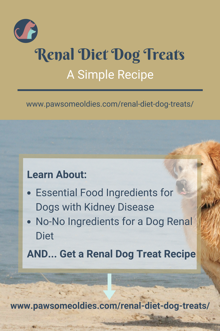Renal Diet Dog Treats Ingredients Safe For Dogs With Kidney Disease Dog Kidney Disease Diet Dog Biscuit Recipes Dog Training