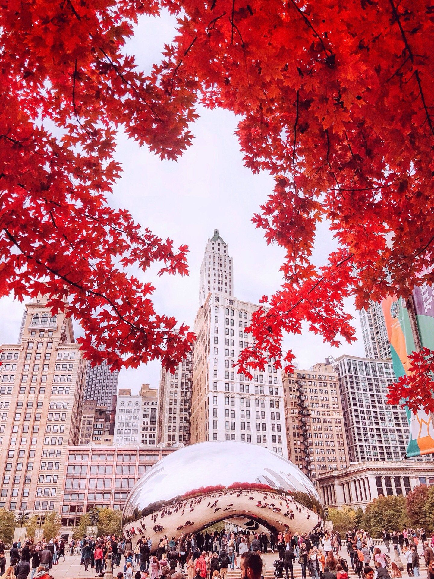Chicago Bean, Cloud Gate, Autumn Photography, Chicago Photography, City Photography, Chicago Wall Art, Chicago Prints, Fall Photography